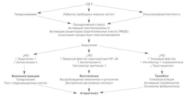 Препарат от атеросклероза название